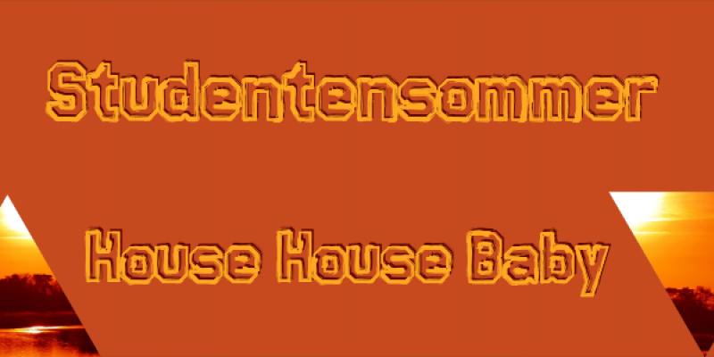 Flyer StuSo || House House Baby